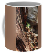Natures Renewal  Coffee Mug