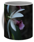 Natures Touch Coffee Mug