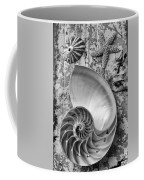 Nautilus Shell With Starfish Coffee Mug