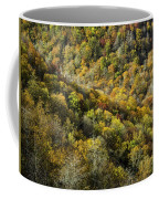 Nc Fall Foliage 0545 Coffee Mug