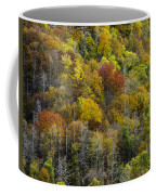 Nc Fall Foliage 0561 Coffee Mug