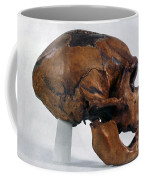 Neanderthal Skull Coffee Mug