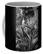 Nepenthe Bird Of Paradise B And W Coffee Mug