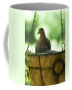 Nesting Doves, Hanging Basket, Balcony Garden, Hunter Hill, May  Coffee Mug
