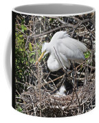 Nesting Great Egret With Chick Coffee Mug