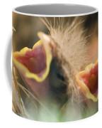 Nesting House Finch Chicks Carpodacus Coffee Mug by Rich Reid