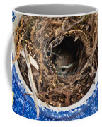 Nesting Wren Coffee Mug