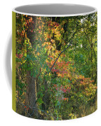 Nestled In The Woods Coffee Mug