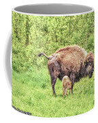 New Born Bison Coffee Mug