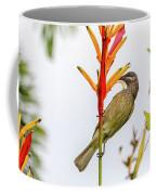 New Caledonia Honeyeater Coffee Mug