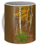 New Growth Old Leaves Coffee Mug