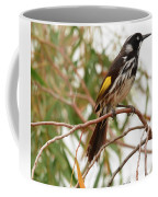 New Holland Honey-eater Coffee Mug