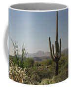 New Mexican Desert Coffee Mug