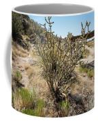 New Mexico Cholla Coffee Mug