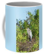New Nest For Great Blue Heron Coffee Mug
