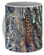 New Orleans Buck Moth Caterpillar Coffee Mug