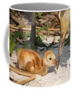 New Sunny Day Coffee Mug