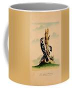 New System Of Ornithology Coffee Mug