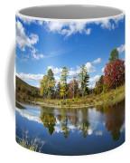 New York Autumn Landscape Coffee Mug
