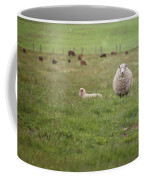 New Zealand Sheep Coffee Mug