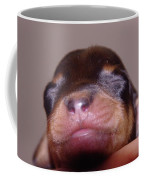 Newborn Puppy   Coffee Mug
