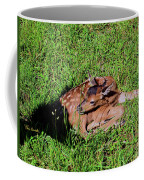 Newborn Red Deer Coffee Mug