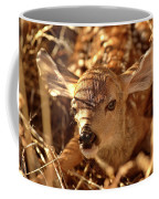 Newly Born Fawn Hiding In A Saskatchewan Field Coffee Mug
