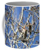 Newlyweds Coffee Mug
