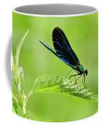 Beautiful Demoiselle Damselfly Coffee Mug