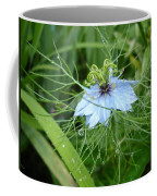 Nigella In Spring Rain Coffee Mug
