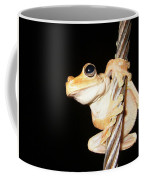Night Frog Coffee Mug