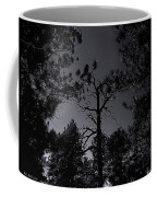 Night In The Druid Cathedral Coffee Mug
