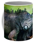 Night Of The Iguana Coffee Mug