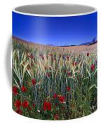 Night Poppies Coffee Mug