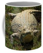 Nile Crocodile - Africa Coffee Mug