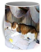 Nine Lives Coffee Mug by Debbi Granruth