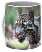 Niran Coffee Mug