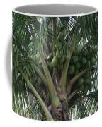 Niu Ola Hiki Coconut Palm Coffee Mug