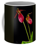 No Lady Slipper Was Harmed Coffee Mug