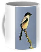 Philippine Falconet Coffee Mug