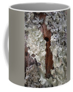 North Side Of A Tree Coffee Mug