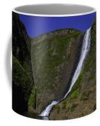 North Table Mountain Spring Falls Coffee Mug