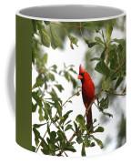 Northern Cardinal - In The Wind Coffee Mug