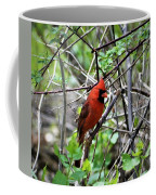 Northern Cardinal Coffee Mug
