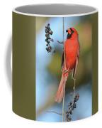 Northern Cardinal With Berry Coffee Mug