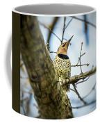 Northern Flicker - Woodpecker Coffee Mug