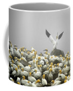 Northern Gannet Coffee Mug