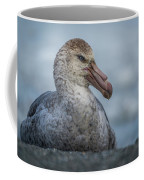Northern Giant Petrel Sitting On Sandy Beach Coffee Mug