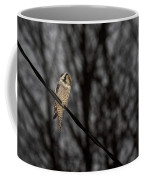 Northern Hawk-owl 22 Coffee Mug