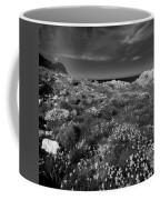 Northern Ireland 69 Coffee Mug